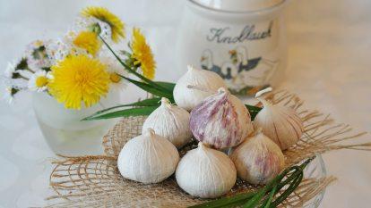 flora-flowers-freshness-416450